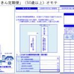 ねんきん定期便 50歳以上 H31