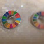 SDGsピンバッチ